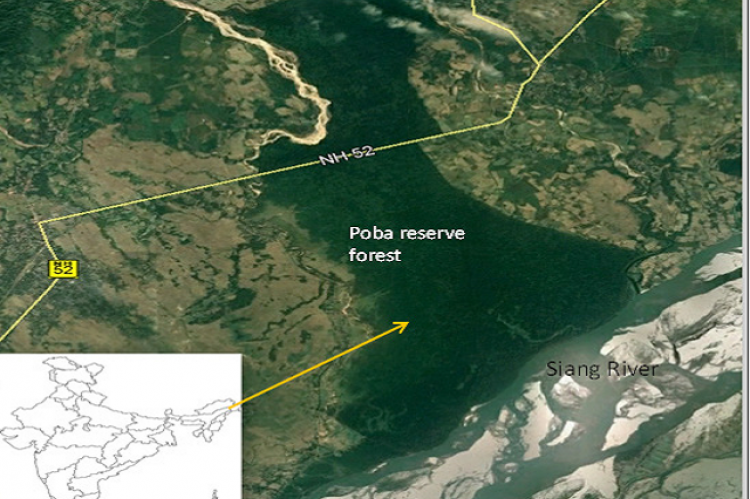 Figure 1: Map of study area (Poba reserve forest)