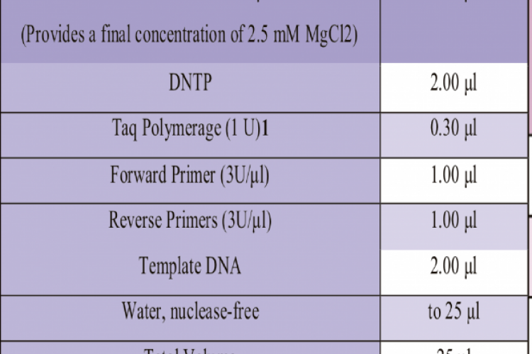 Reaction mixture used for assay development of the PCR