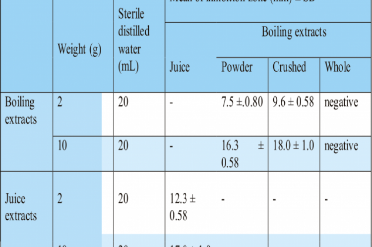 Antibacterial activity of juice and boiling garlic extracts on E. coli K12