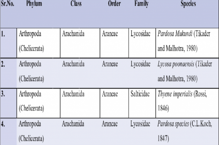 List of Spider species with taxonomical classification