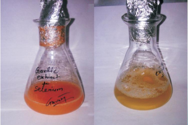 Color change of reaction medium