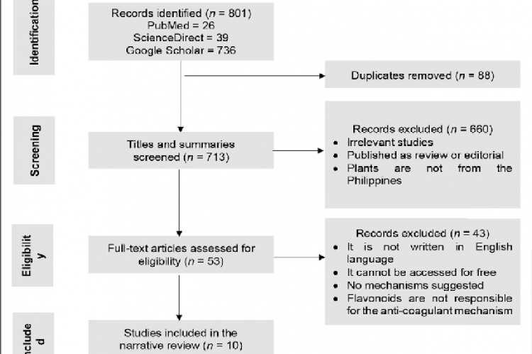 Flowchart of the study selection process