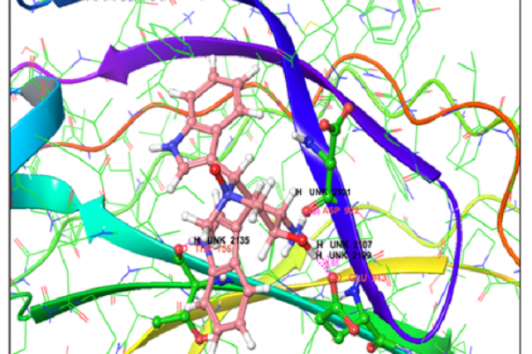Interaction profile of highly interacting compound with PKC ε protein obtained through molecular docking with core hopping method