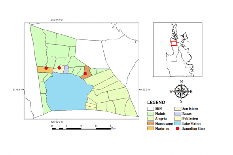 Figure 1. Area Map showing the three ricefield study sites of Lake Mainit, Philippines.