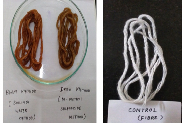 Comparison of the control fibre (undyed) with that of the dyed fibre