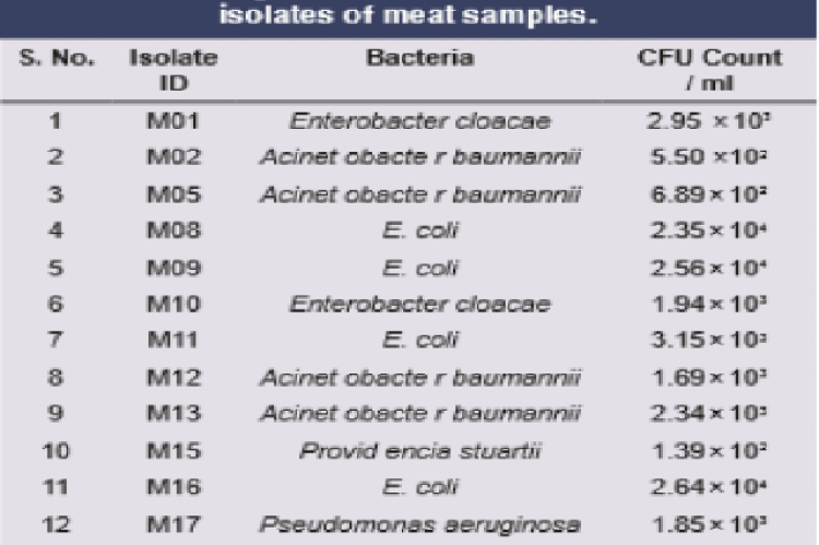 Average CFU counts of different bacterial isolates of meat samples