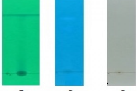 TLC chromatogram at 1) 254 wavelength, 2) 366 wavelength and 3) visible
