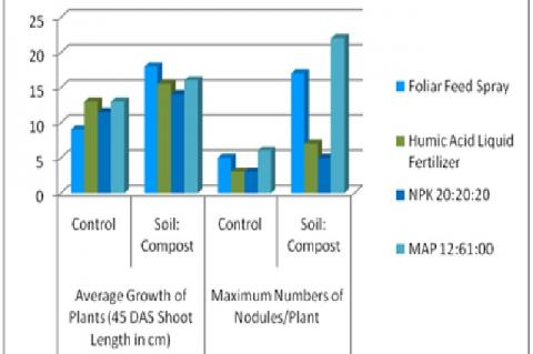 Shoot Length (45 DAS) and Maximum Number of Nodules/Plant